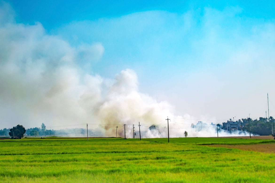 An Unlikely Solution to India's Crop Burning from the Labs of Switzerland - nextrends Asia